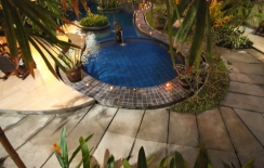 pool and garden in sanur hotel